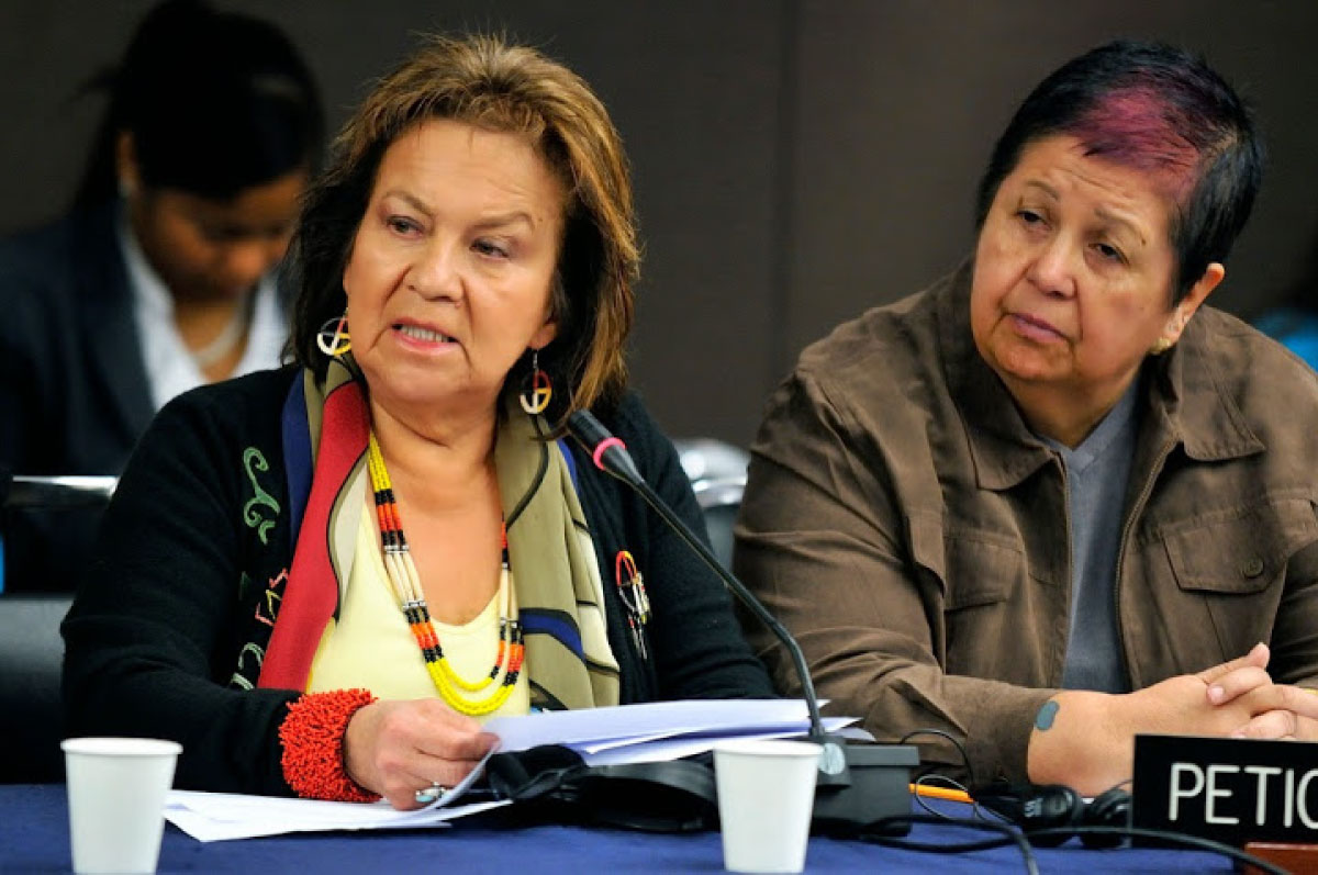 NWAC and FAFIA at IACHR